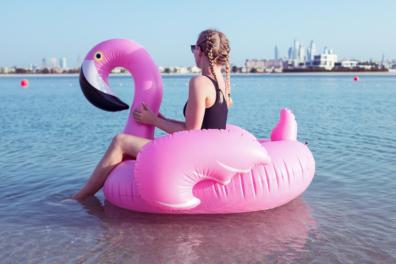 Sunnyinga Flamingo Dubai Meer Beach Travelblog